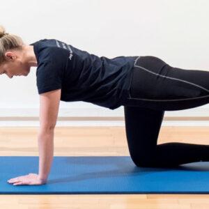GLAD RYG er et træningsforløb til dig, der har længerevarende smerter i din ryg