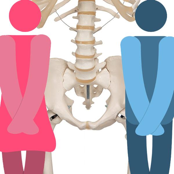 Gynækologisk Obstetrisk fysioterapi - Også kaldet GynObs
